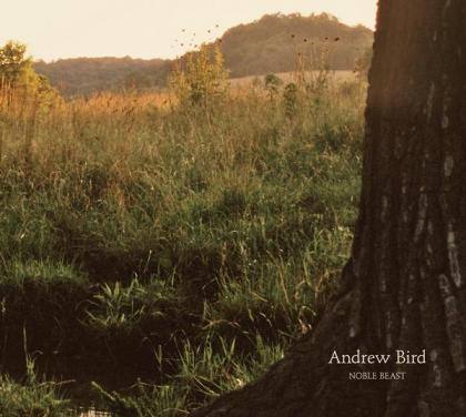 andrewbird-noblebeast